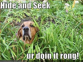 Hide and Seek  ur doin it rong!