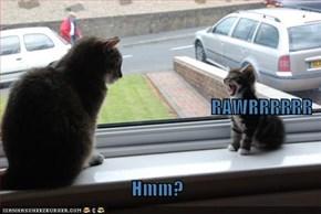 RAWRRRRRR Hmm?