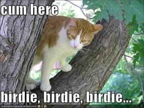 cum here  birdie, birdie, birdie...
