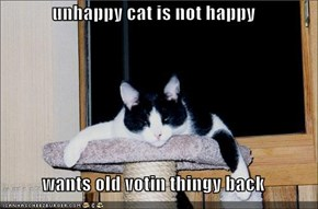 unhappy cat is not happy  wants old votin thingy back