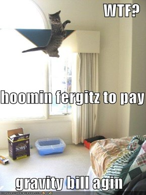 WTF? hoomin fergitz to pay  gravity bill agin