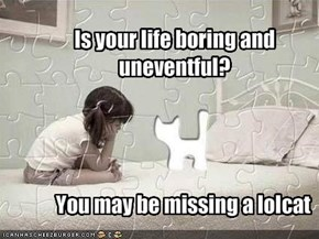 Is your life boring and uneventful?