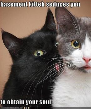 basement kitteh seduces you  to obtain your soul