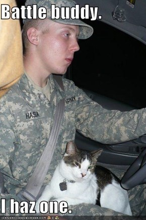 Battle buddy.  I haz one.