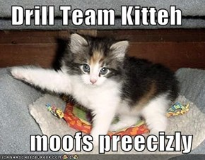 Drill Team Kitteh  moofs preecizly