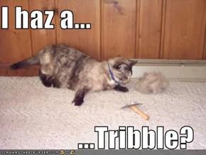 I haz a...  ...Tribble?