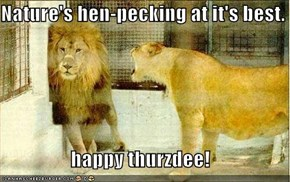 Nature's hen-pecking at it's best.  happy thurzdee!