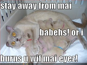 stay away from mai                         babehs! or i  burns u wif mai eyez!
