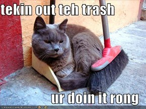 tekin out teh trash  ur doin it rong