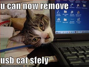 u can now remove  usb cat sfely