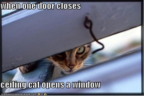 when one door closes  ceiling cat opens a window
