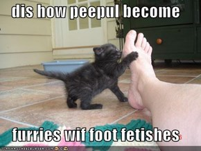 dis how peepul become  furries wif foot fetishes