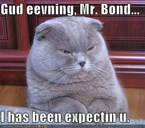 Gud eevning, Mr. Bond...  I has been expectin u.