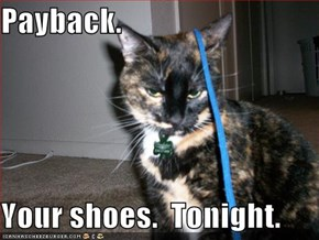 Payback.  Your shoes.  Tonight.