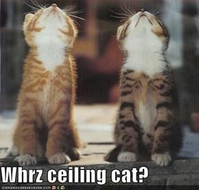 Whrz ceiling cat?