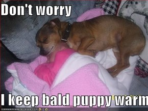 Don't worry  I keep bald puppy warm