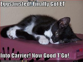 Eggsawsted! Finally Got ET  Into Carrier! Now Good T'Go!