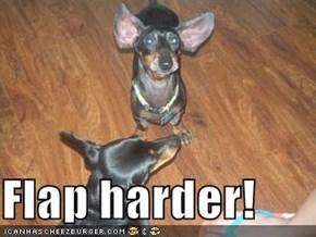 Flap harder!