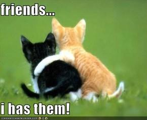 friends...  i has them!