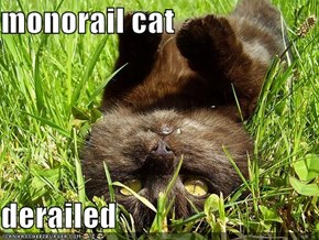 monorail cat  derailed