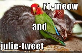 ro-meow and julie-tweet