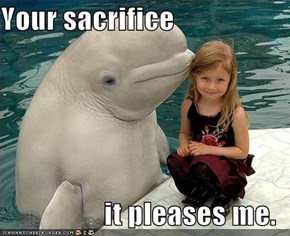 Your sacrifice  it pleases me.