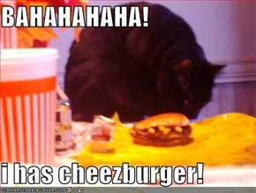 BAHAHAHAHA!  i has cheezburger!