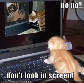 no no!  don't look in screen!