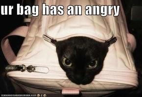 ur bag has an angry