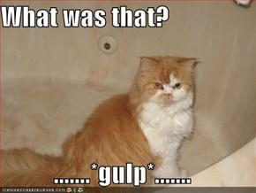 What was that?  .......*gulp*.......