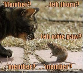 'Member?           ...teh thorn?                            ... teh owie paw?   ...'member?   ...'member?