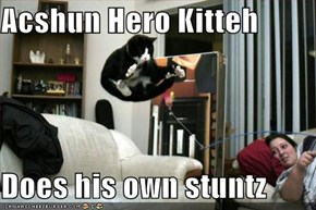 Acshun Hero Kitteh  Does his own stuntz