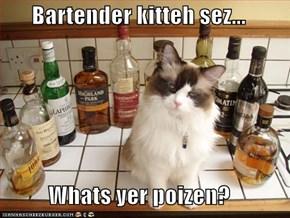 Bartender kitteh sez...  Whats yer poizen?