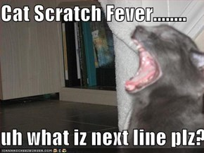 Cat Scratch Fever........  uh what iz next line plz?