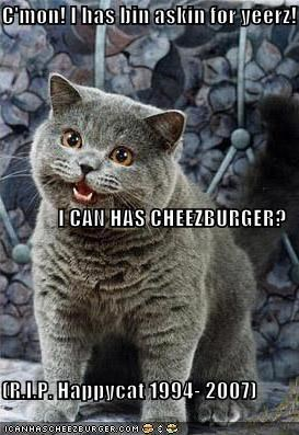 C'mon! I has bin askin for yeerz! I CAN HAS CHEEZBURGER? (R.I.P. Happycat 1994- 2007)