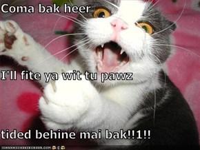Coma bak heer I'll fite ya wit tu pawz tided behine mai bak!!1!!