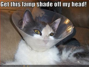 Get this lamp shade off my head!