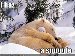 I haz  a snuggle