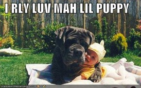 I RLY LUV MAH LIL PUPPY