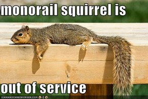 monorail squirrel is  out of service