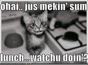 ohai.. jus mekin' sum   lunch...watchu doin'?