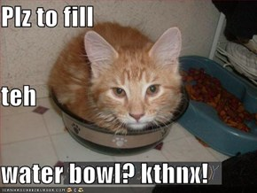 Plz to fill  teh  water bowl? kthnx!
