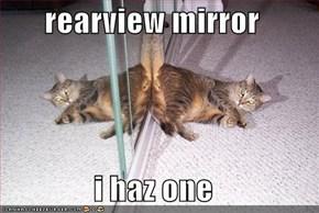 rearview mirror  i haz one
