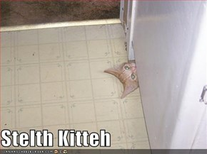 Stelth Kitteh