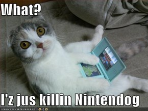 What?  I'z jus killin Nintendog