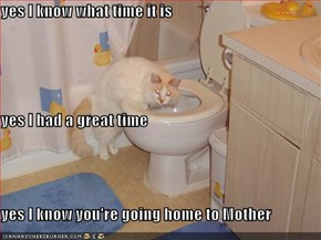 yes I know what time it is yes I had a great time yes I know you're going home to Mother