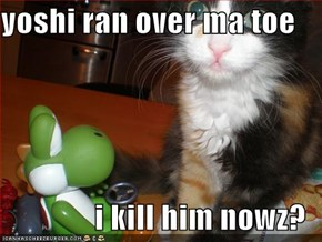 yoshi ran over ma toe  i kill him nowz?
