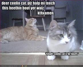 deer ceelin cat, plz halp mi teech this heethin bout yer waiz.                                                                                            kthxamen.