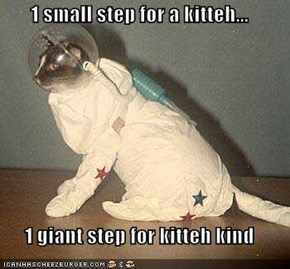 1 small step for a kitteh...  1 giant step for kitteh kind