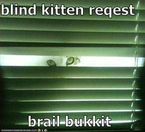 blind kitten reqest  brail bukkit